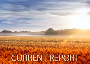 urrent Report Newsletter